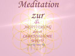 Webinar: Meditation zur ॐAKTIVIERUNG deiner Lebensblume(Merkaba)