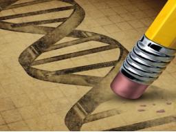 Webinar: TRANSFORMATION DEINER EGO-DNA - DEIN INDIVIDUELLES THEMA