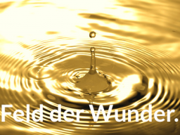 Webinar: Wir öffnen das Feld der Wunder