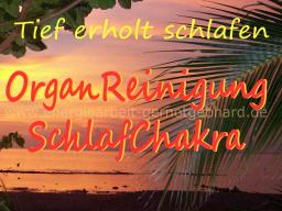 Webinar: Organreinigung-Das SchlafChakra   ..musikfrei