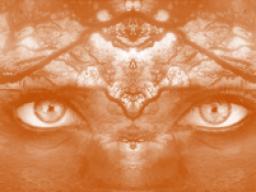 Webinar: Die Symphonie des Bewusstseins
