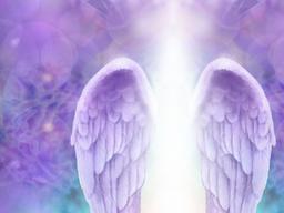 Webinar: Herzöffnung Meditation