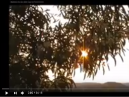 Webinar: Meditation Heilung Körper Seele Geist
