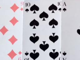 Webinar: Du willst Skatkarten legen lernen?4 Termine