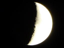 Webinar: Zum Julivollmond mit Mondfinsternis: Die weibliche Schöpfungskraft kehrt zurück