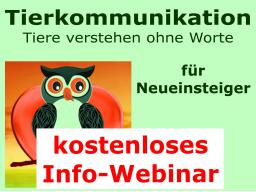 Webinar: Tierkommunikation-INFO-Webinar für Neueinsteiger