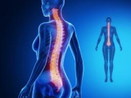 Webinar: Astromedizin 8.1.:Wirbelsäulen- und Gelenkerkrankungen