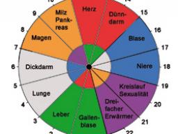 Webinar: Die Organ-Uhr - Leben im Takt Deiner inneren Uhr