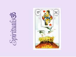 Webinar: ૐ  17 DIE STÖRCHE  ૐ    Themenreihe:  Meine spirituelle Reise durch das Lenormand- Karten-Deck!