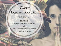 Webinar: Tierkommunikation mit verstorbenen Tieren (Modul 2a)