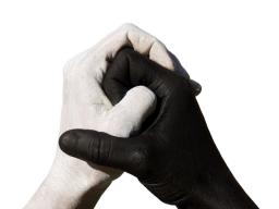 Webinar: Yin & Yang Ausgleich
