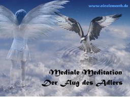 Webinar: Mediale Meditation - Der Flug des Adlers - Geistiger Kontakt mit Hilfe Ihres Geistführers