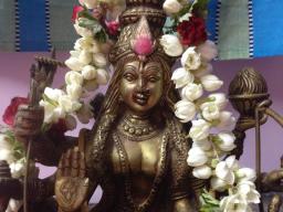 Webinar: Shakti Mantra & Yantra Seminar - Heilung und Transformation