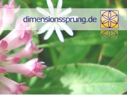 Webinar: Chakrenreinigung / Chakrenheilung