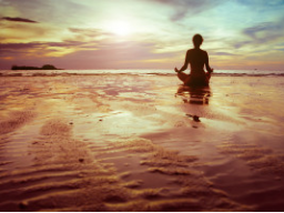 Webinar: Meditation Mental Training