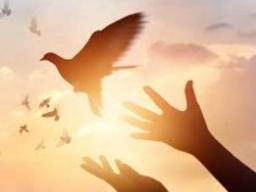 Webinar: LOSLASSEN VON ANHAFTUNGEN - GEBETS-DYNAMIK DES LOSLASSENS - KRAFT DER WIEDERHERSTELLUNG DEINES INNEREN FREIRAUMS