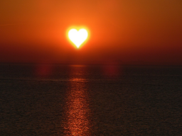 Webinar: Hingabe an das Leben und die Liebe