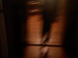 Webinar: Schatten in unserer Seele - Welche Lösungen die Ur-Psychologie dafür bereit hält