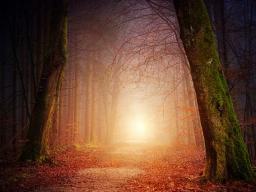 Webinar: Angst vor dem Ungewissen - Gruppenheilung und Meditation