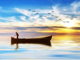 Webinar: ✩ Geschenk ✩ Reise zu deiner persönlichen Evolution ✩