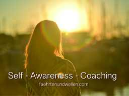 Webinar: Self-Awareness-Coaching / EinzelWebinar