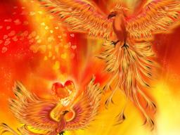 Webinar: Die Auferstehung deiner Wirbelsäule