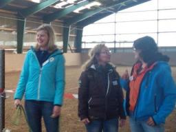 Webinar: Business Ladies -Taster - pferdegestütztes Seminar