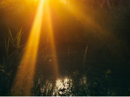 Webinar: Begegnung mit Grace , die Silberne Strahl der Gnade