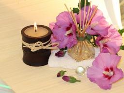 Webinar: NEU Ayurvedische violettlicht Aura Behandlung