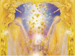 Webinar: Engelkarten Reading/Einzelwebinar
