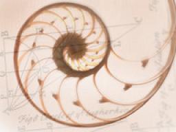 Webinar: Die 12 Ursprungsebenen gechannelt von den Elohim