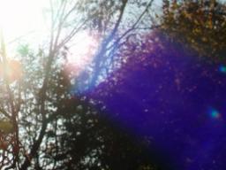 Webinar: Sonnenwanderung in den Schützen- Jupiter lässt grüßen