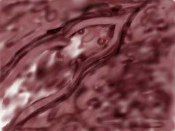 Webinar: Erwachen des Schläfers in Dir mit der Energie des violetten Drachens