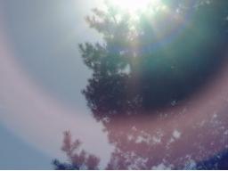 Webinar: Sonne in Zwillinge- kosmische Botschaften