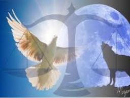 Webinar: Herbst-Tag-und-Nacht-Gleiche - eine Trance-Phantasie-Reise