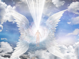 Webinar: Die feinstofflichen Körper und Deine Verbindung zum Göttlichen
