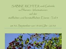 Webinar: SABINE RICHTER zu Pflanzen - Informationen auf der stofflichen und feinstofflichen Ebene - Teil 5