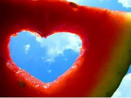 Webinar: Liebe 2: Warum wir uns immer in die falschen verlieben