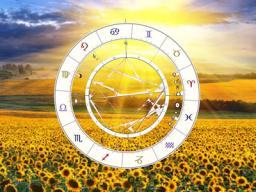 Webinar: Fallbeispiele / Übungen Solardeutung