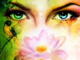 Webinar: Blockadenlösung mit der Lotus Methode