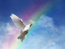 Webinar: Dein Selbst und Deine Beziehung zu Gott (Lebensaufgabe 1)