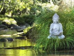 Webinar: Die 7 heiligen Quellen der Heilung