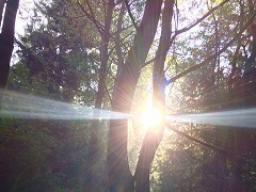 Webinar: Es werde Licht!