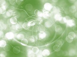 Webinar: Harmonisierung Deines Seins