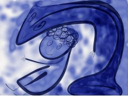 Webinar: Delphinmedizin für Deine Seele