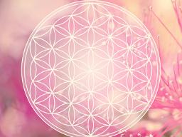 Webinar: Harmonisierung und Entspannung für deine Seele