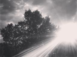Webinar: Reisen ins Ungewisse - ein Blind Date mit dem Leben?