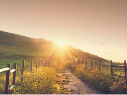 Webinar: LEBEN beinhaltet  Erfolg und Zufriedenheit. Erfolg und Zufriedenheit beinhalten  Glück,  Gesundheit,  und Geld.