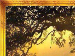 Webinar: Einweihung in die Energie Spirit der Four Winds