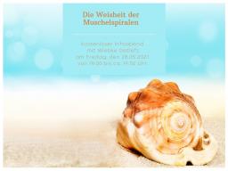 Webinar: Die Weisheit der Muschelspiralen ~ Infoabend